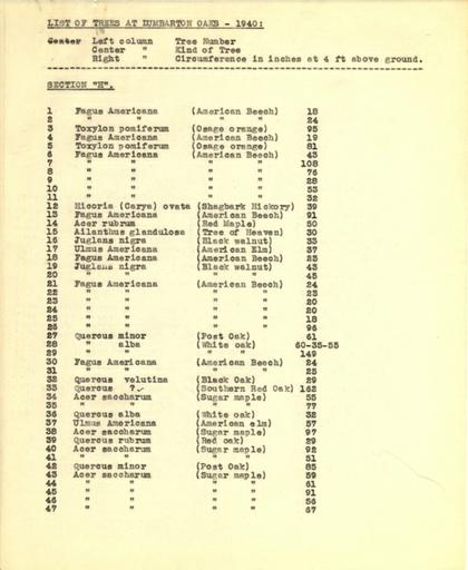 List of trees, Section H, 1940